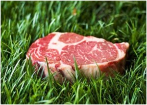 grass-fed-beef naturally boosts testosterone