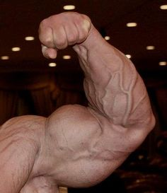 Todd Lamb - Alpha Nation - vascular arms