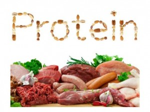 AlphaNation-protein