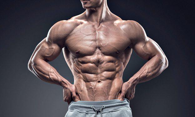 Todd Lamb Fitness