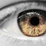 Todd Lamb eyes